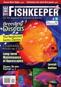 TheFishkeeperSeptOct14