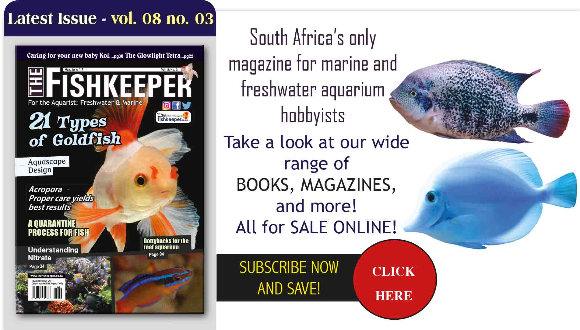Freshwater aquarium fish in south africa - Home Page Pics Fishkeeper May