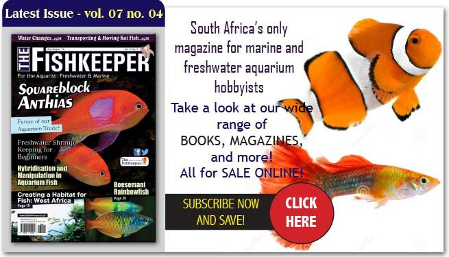 Thefishkeepermagazine