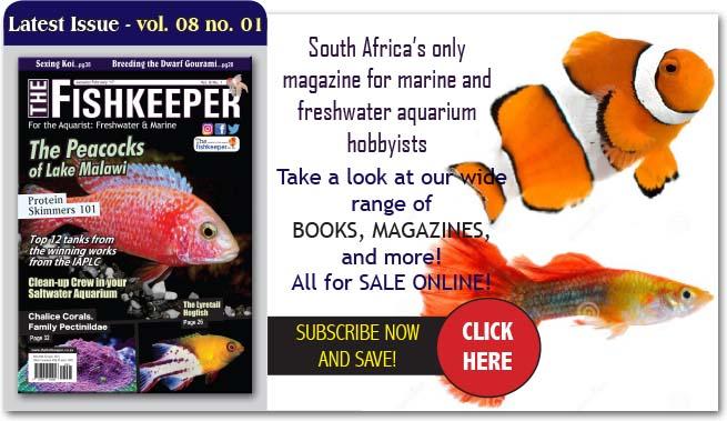thefishkeeperjanfeb17