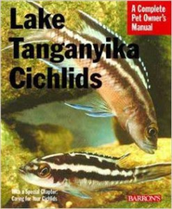 Lake Tanganyika Cichlids